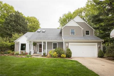 Avon Lake Single Family Home For Sale: 303 Bayview Drive