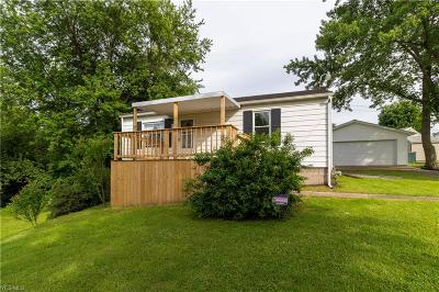 Hubbard Single Family Home For Sale: 5786 Youngstown Hubbard Road