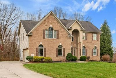 Poland Single Family Home For Sale: 2481 Shepherds Ridge