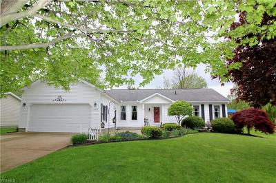 Salem Single Family Home For Sale: 376 Plymouth Place