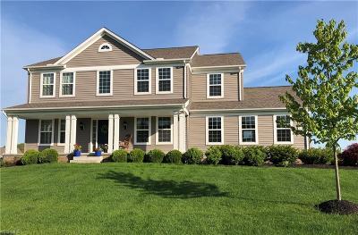 Hudson Single Family Home For Sale: 7796 Alexandra Drive