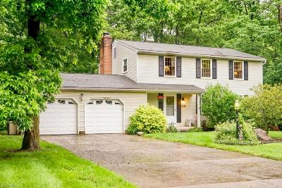 Hudson Single Family Home For Sale: 5966 Ogilby Drive