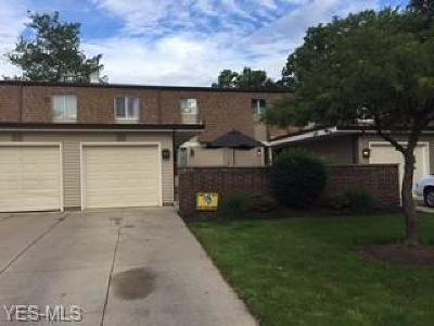 Olmsted Falls Condo/Townhouse For Sale: 9284 Willow Lane