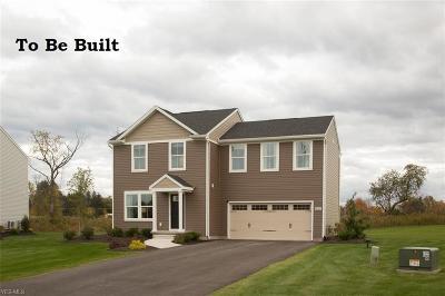 Lorain County Single Family Home For Sale: 107 Fall Lake Drive