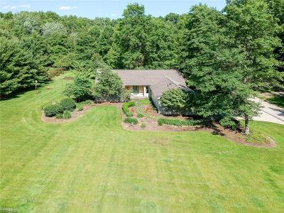 Lorain County Single Family Home For Sale: 12755 S Durkee Road