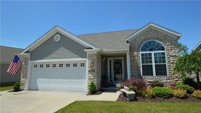 Macedonia Single Family Home Active Under Contract: 7690 Willow Lane