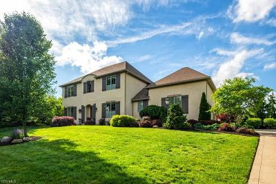 Massillon Single Family Home For Sale: 9617 Mont Clair Boulevard