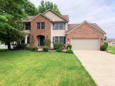 Lorain County Single Family Home For Sale: 1025 Wicklow Court