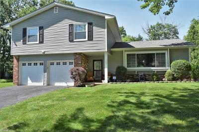 Hudson Single Family Home For Sale: 1703 Arbutus Drive