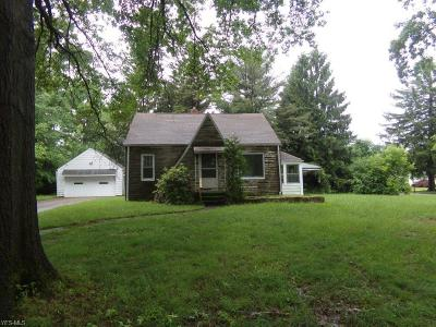 Youngstown Single Family Home For Sale: 1420 N Schenley Avenue