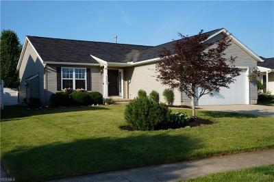 North Ridgeville Single Family Home For Sale: 38062 Pebble Lake Trail