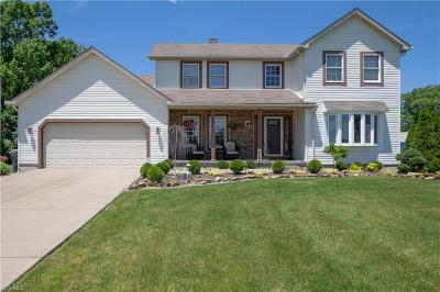 Youngstown Single Family Home For Sale: 5876 Country Trail