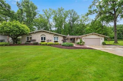 Canfield Single Family Home For Sale: 293 Moreland Drive