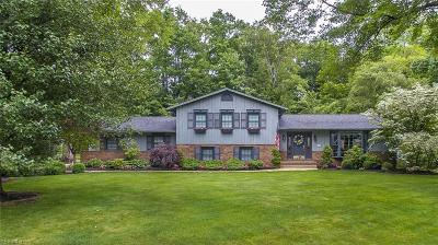 Copley Single Family Home Active Under Contract: 171 Scenic View Drive