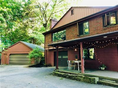 Struthers Single Family Home For Sale: 230 Wetmore Drive