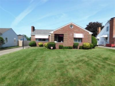 Youngstown Single Family Home Active Under Contract: 556 S Schenley Avenue