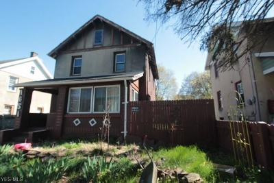 Youngstown Single Family Home For Sale: 1651 Midland Avenue