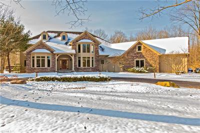 Chagrin Falls Single Family Home For Sale: 9601 Weathervane Drive