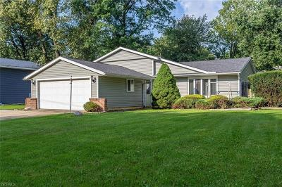 Lorain County Single Family Home Active Under Contract: 874 Harris Road