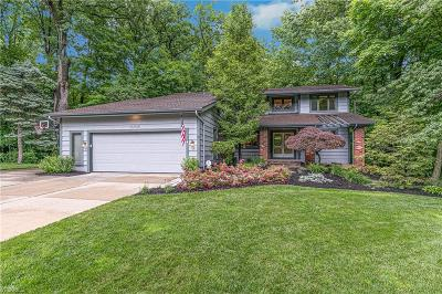 Willoughby Single Family Home For Sale: 35985 Timber Ridge Lane