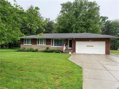 Broadview Heights Single Family Home For Sale: 8434 Wyatt Road