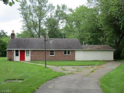 Youngstown Single Family Home For Sale: 535 Ferncliff Avenue