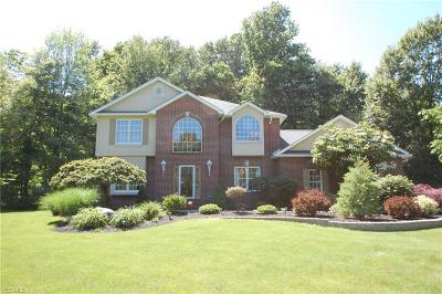 Mahoning County Single Family Home For Sale: 8744 Tippecanoe Road