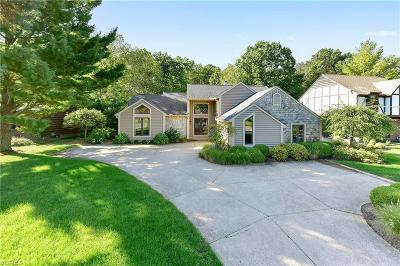 Bay Village Single Family Home For Sale: 29301 Wolf Road