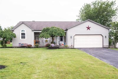 Austintown Single Family Home Active Under Contract: 6823 Pineridge Court