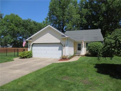 North Ridgeville Single Family Home For Sale: 6005 Eastview Avenue