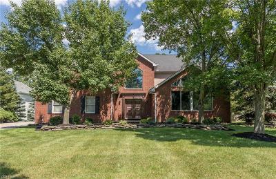 Brecksville Single Family Home For Sale: 2568 Crane Creek Parkway