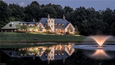 Massillon Single Family Home For Auction: 7406 Arlington Avenue