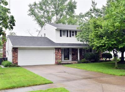 Elyria Single Family Home For Sale: 372 Briar Lake Drive