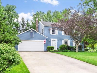Hudson Single Family Home Active Under Contract: 1504 Carriage Hill Drive