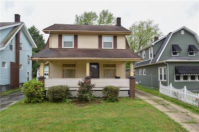 Youngstown Single Family Home For Sale: 162 S Maryland Avenue