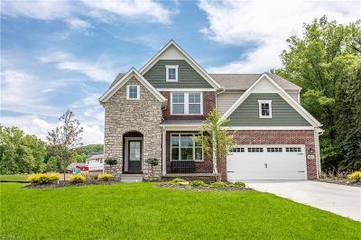 Seven Hills Single Family Home For Sale: 547 E Ridgewood Drive