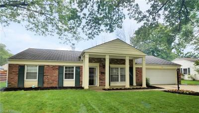 Lorain County Single Family Home For Sale: 146 Georgette Drive