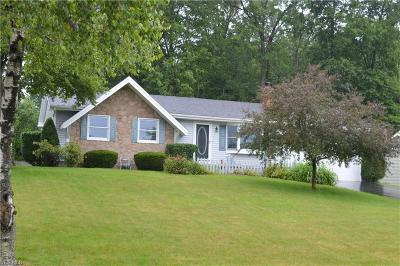 Canfield Single Family Home For Sale: 3392 Johnson Farm Drive