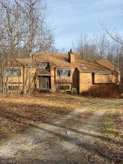 Chagrin Falls Single Family Home For Sale: 17176 Wood Acre Trail