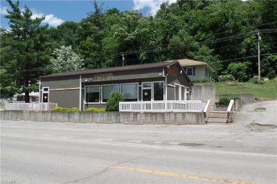 Morgan County Commercial For Sale: 3766 N State Route 60