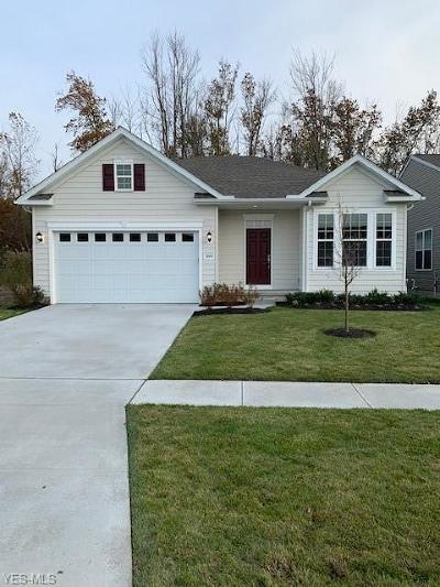 Lorain County Single Family Home For Sale: 3844 Heron Drive