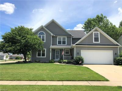 Lorain County Single Family Home For Sale: 400 Alexis Drive