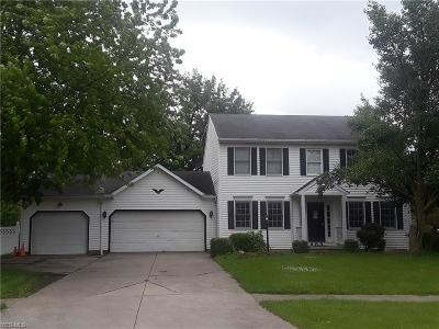 Medina County Single Family Home For Sale: 483 Brambleside