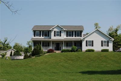 Zanesville Single Family Home For Sale: 3195 Dickory Circle