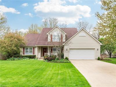 Single Family Home For Sale: 8197 Hidden Glen Avenue