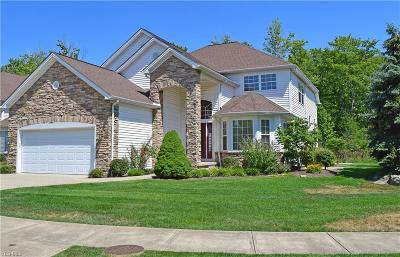 Highland Heights Single Family Home For Sale: 357 Burwick Road
