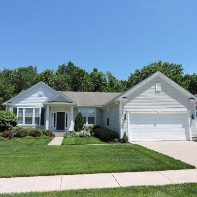 North Ridgeville Single Family Home For Sale: 9151 Chatham Circle