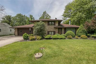 North Royalton Single Family Home For Sale: 16142 York Road
