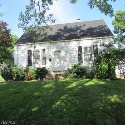 Youngstown Single Family Home For Sale: 2760 Zedaker