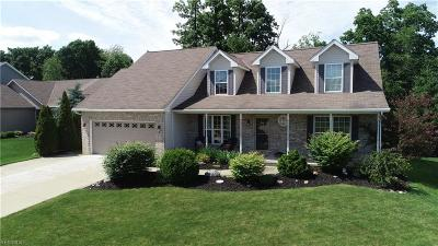 Medina County Single Family Home For Sale: 367 Bella Rosa Court